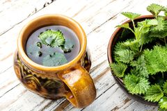 Tea with nettle. Cup of healthy herbal tea with nettle.Raw spring nettle royalty free stock photo
