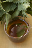 Tea with nettle in the glass cup Royalty Free Stock Images