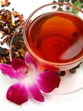 Tea och rosa orchid Royaltyfri Foto