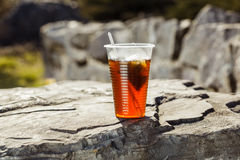 Tea in one glass in nature Stock Images