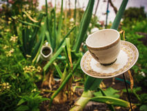 Tea party in a garden. A tea cup, milk pourer and other plates in the distance, all in a garden like a  Mad Hatter`s tea party. Also a metaphor for relaxation Royalty Free Stock Images