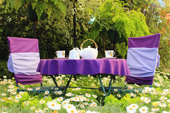 Tea party in a garden. At the violet table Stock Image