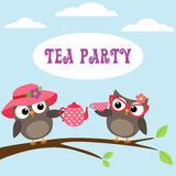 Tea party invitation with cute owls Stock Photos
