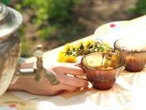 The tea party outdoors in the spring royalty free stock photo