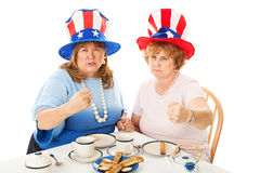 Tea Party Patriots - Fighting Mad Stock Photography