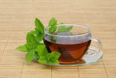 Tea Peppermint Royalty Free Stock Images