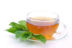 Tea Peppermint Royalty Free Stock Photo