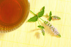 Tea with peppermint flowers Stock Photo