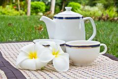 Tea picnic Stock Images