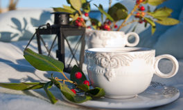 Tea picnic in a garden Royalty Free Stock Photography