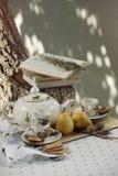 Tea picnic in the garden Stock Photos