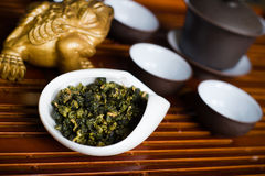 Tea leaves in a cup. Chinese tea pile in a cup closeup Stock Photos