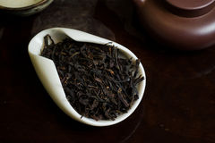 Tea leaves in cup. Chinese tea in cup closeup Stock Image