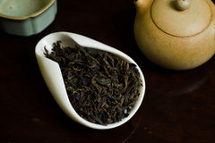 Tea pile in white cup. Chinese tea pile in cup closeup Stock Images
