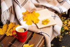Tea, plaid, lemon, yellowed leaves. Red mug of tea with a lemon near a rug on a bench in the autumn in the open air Royalty Free Stock Photography