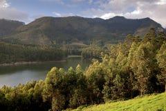Tea Plantation Lake. Tea plantation and lake in Munnar, Kerala, India Royalty Free Stock Image