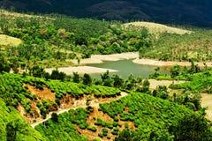Tea Plantation Landscape. Munnar, Kerala, India Stock Photos - Image ...