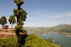 Tea Plantation - Sri Lanka Stock Photography