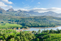 Tea plantations. And mountains around lake. Munnar, Kerala, India stock photos
