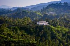 Tea plantations in Ella, Sri Lanka. A tea factory surrounded by tea plantations in Ella, Sri Lanka Royalty Free Stock Photos