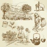 Tea plantations. Hand drawn set Royalty Free Stock Photography