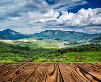 Tea plantations in India Stock Image