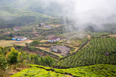 Houses in the middle of a tea plantation Stock Photo
