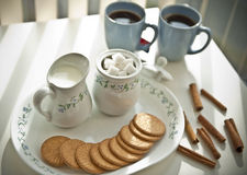 Tea Platter. With biscuits on the side Stock Photography