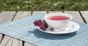 Tea of pomegranate Stock Photo