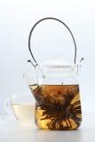 Tea. A pot of Chinese flower tea Stock Image