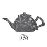 Tea pot decorated with hand drawn and herbs on white background. Stock Photos