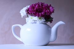 Time for Floral Tea stock image