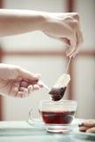 Tea preparation Stock Photos