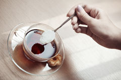 Tea preparation Stock Photography