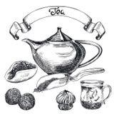 Tea pu-erh. set of vector sketches Stock Photography
