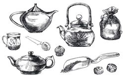 Tea pu-erh. set of vector sketches Royalty Free Stock Images
