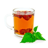 Tea with raspberry and green leaf in glass mug Royalty Free Stock Photo