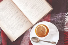Tea and reading Stock Photography