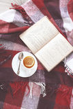 Tea and reading Royalty Free Stock Photography