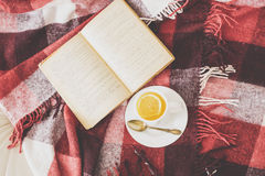 Tea and reading Royalty Free Stock Photos