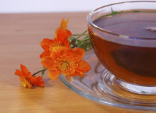 Tea and red flowers Royalty Free Stock Image