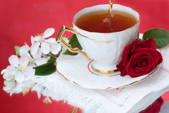 Tea and red rose Royalty Free Stock Photos