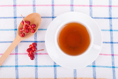 Tea with red viburnum berries Stock Images