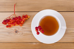 Tea with red viburnum berries Royalty Free Stock Photography