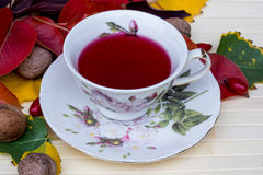 Tea. A refreshing tea on a table in the autumn garden Royalty Free Stock Image