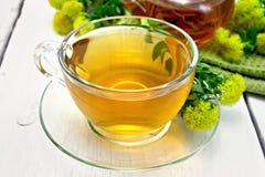 Tea of Rhodiola rosea in cup on light board Stock Photos