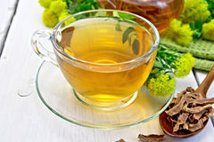Tea of Rhodiola rosea in cup with spoon on light board Stock Image
