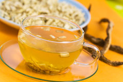 Tea of Root of Marshmallow- herbal Medicine Royalty Free Stock Photo