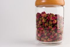Tea rose buds in the transparent jar isolated on white. Background royalty free stock photo