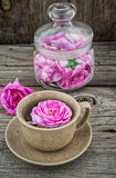 Tea rose Royalty Free Stock Images
